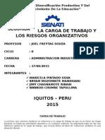 La Carga de Trabajo y Los Riesgos Organizativos