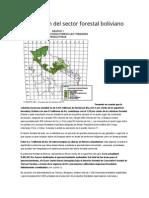 Información Del Sector Forestal Boliviano