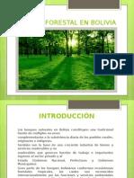 Diapositivas Forestal