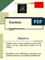 SDlab5 (1)