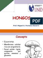 Semana 11- 12.- Hongos.pptx 2015