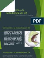 Introducción a La Metodología EIA