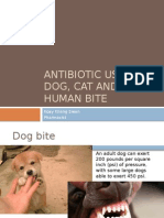 Antibiotic Use in Dog, Cat and Human