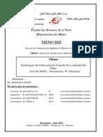 Mémoire fin d'étude master 2 sur  plâtre