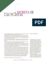 Plantas (vida secreta)