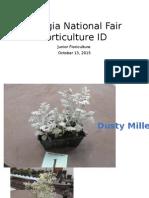 2015 georgia national fair junior floriculture id