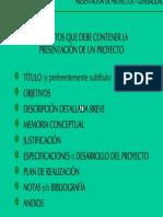 Modelo de presentacion de proyectos.pdf