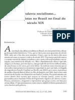 Ideias Socialistas No Brasil No Final Do XIX
