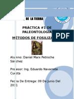 Metodos de Fosilizacion