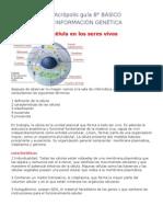GUIA 8° CIENCIAS celula e informacion genetica 2010 aCROPOLIS