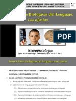 Presentación Tema 5. NPGrado_Clase