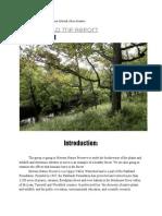 forestreport