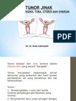 Tumor Jinak Reproduksi