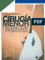 Guia de Practica Clinica de Cirugia Menor en Atencion Primaria. 2010