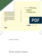 Poesía, Razón e Historia Gallegos