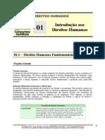 HUM 01 - Introdução aos Direitos Humanos.pdf