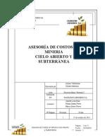 INFORME_COSTOS_PROY.docx