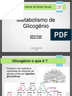Metabolismo Glicogenio