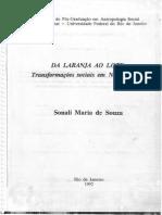 Da Laranja Ao Lote - Sonali Maria de Souza