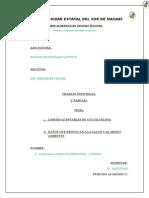 LÍMITES MÁXIMOS PERMISIBLES DE CONCENTRACIONES DE EMISIÓN AL AIRE PARA FUENTES FIJAS DE COMBUSTIÓN.docx