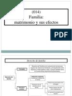 (014) Familia Matrimonio y Sus Efectos (Extranjería)