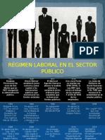 Tema 5; Servicio Civil