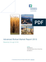 E2 Biofuel Market Report 2013.Final