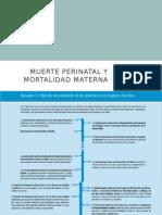 Muerte Perinatal y Mortalidad Materna