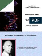 Plasmidos - Estructura y Función