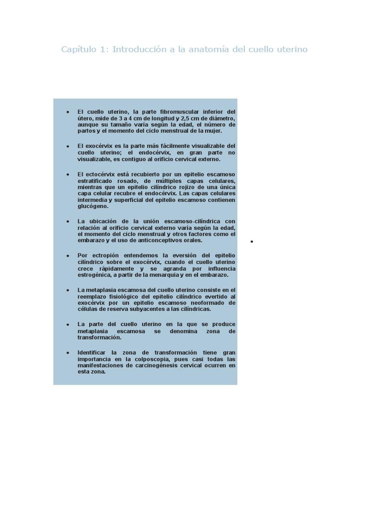 Increíble Anatomía Femenina Cuello Uterino Imagen - Anatomía de Las ...