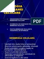 1.2.Fiziologia Membranei Cel