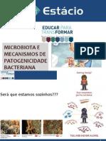 Microbiota e Virulência.pptx