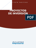 2015 Finan 10 Proyectos Inversion