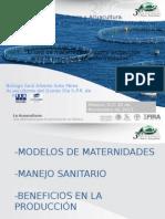 04_Panel_1_Saul_Soto.ppsx