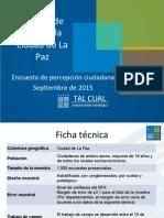 Informe Enuesta 2015