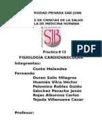 13 FISIOLOGIA CARDIOVASCULAR.docx
