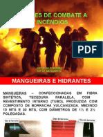 Palestra Embrapa Mangueiras.ppt
