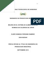 Sistema de Alimentacion de Biomasa en Calderas de Vapor