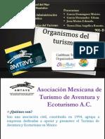 Organismos Del Turismo (1)