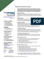 CAESAR II Productivity Training 20091217
