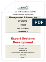 Management Information Systems - Assignment 2