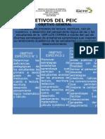 Objetivos Del PEIC