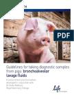 338945 Swine Sampling