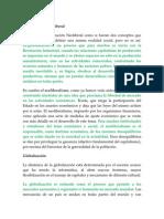 Tema 3 Globalizacion