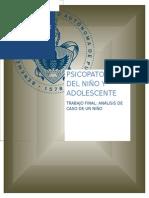 Trabajo Psicopatologia Del Niño