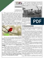 História e geografia de Rondonópolis