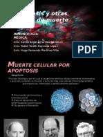 Apoptosis y otras formas de muerte celular.