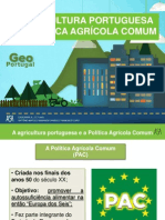 A PAC e a agricultura portuguesa