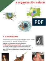 2_la_organizaciÓn_celular_ppt_1_.pdf