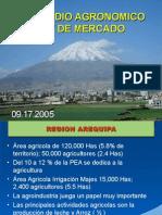 Estudio agronomico y de mercado.ppt